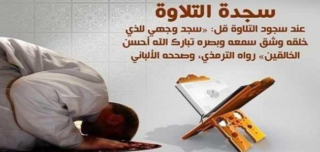 كم سجدة في القرآن الكريم